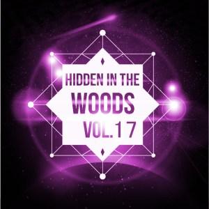 Hidden In The Woods Vol.17