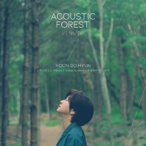 尹道鉉的專輯The Acoustic Forest