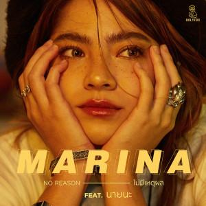 อัลบัม ไม่มีเหตุผล (feat. นายนะ) ศิลปิน MARINA