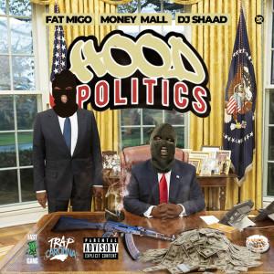 Mally Mall的專輯Hood Politics