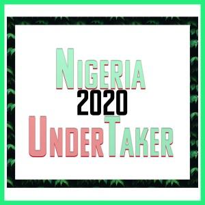 Album Nigeria 2020 Undertaker from Various Artist