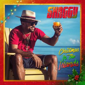 Album Amazing Christmas (feat. Hannah Brier) from Shaggy