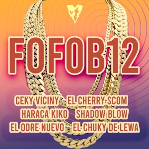 Album Fofob12 from Ceky Viciny