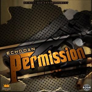 Album Permission from Echo Dan