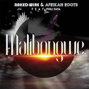 Album Malibongwe from Phili Faya
