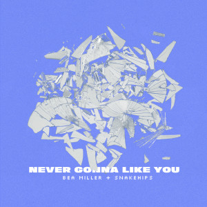 Album NEVER GONNA LIKE YOU from Bea Miller