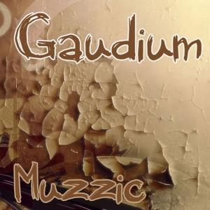 Album Muzzic from Gaudium