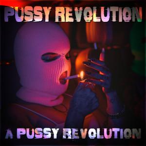 Pussy Revolution的專輯A Pussy Revolution