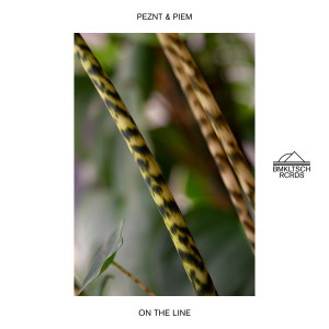 Album On The Line from Peznt