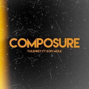 Album Composure (feat. Kofi Mole) from Tulenkey