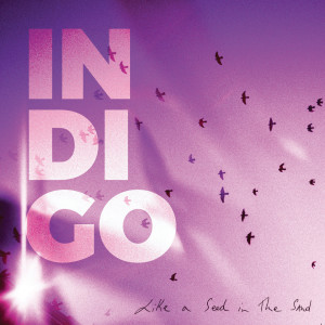 Album Like a Seed in the Sand from Indigo