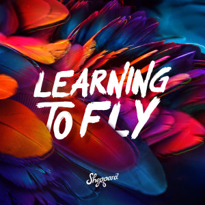 Album Learning To Fly from Sheppard