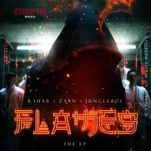 收聽Steve Aoki的Flames (Steve Aoki Remix)歌詞歌曲