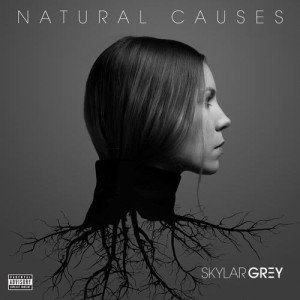 Album Natural Causes from Skylar Grey