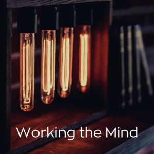 Relax α Wave的專輯Working the Mind