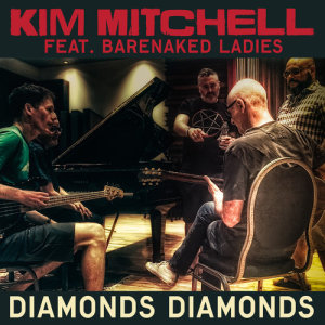 Album Diamonds, Diamonds from Barenaked Ladies