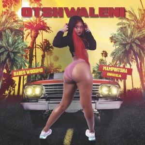 Album Otshwaleni Single from Babes Wodumo