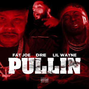 Fat Joe的專輯Pullin
