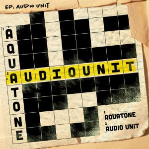 Audio Unit