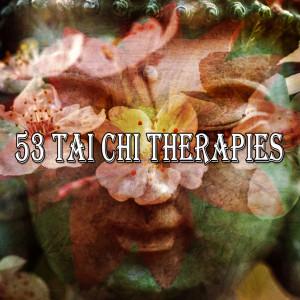 Yoga Tribe的專輯53 Tai Chi Therapies