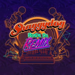 Rock da Remix dari Shaggydog