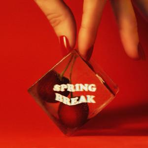 AJ Mitchell的專輯Spring Break