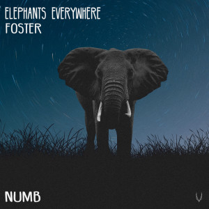 Album Numb from Foster