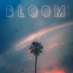 Album Bloom from Adam Friedman