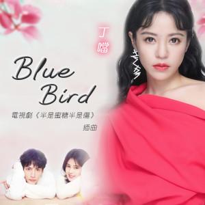 丁噹的專輯Blue Bird (电视剧《半是蜜糖半是伤》插曲)