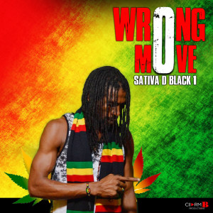 Album Wrong Move from Sativa D Black 1