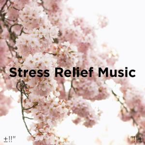 Album Stress Relief Music from Deep Sleep