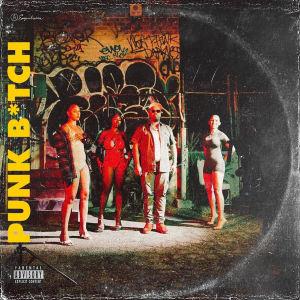 Album Punk Bitch (Explicit) from Rucci