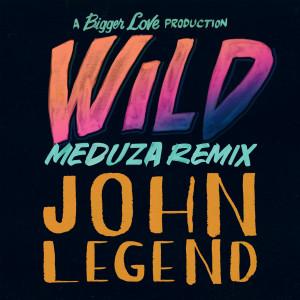 John Legend的專輯Wild (Meduza Remix)