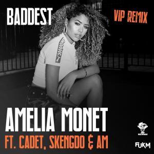 Listen to Baddest (VIP Remix) song with lyrics from Amelia Monét