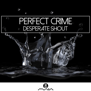 Album Desperate Shout from Perfect Crime