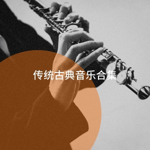 Album 传统古典音乐合集 from The Relaxing Classical Music Collection