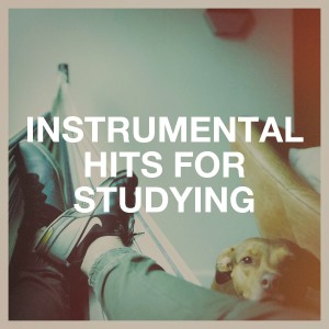 Cover Pop的專輯Instrumental Hits for Studying
