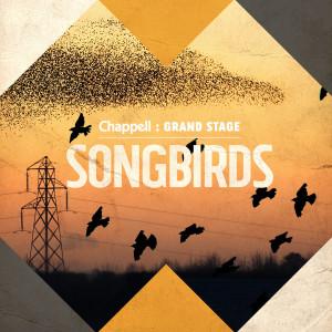 Album Songbirds from Ben Cocks