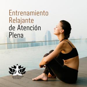 Album Entrenamiento Relajante de Atención Plena (Colección de Sonidos Contemplativos para la Meditación de Atención Plena) from Meditacion Música Ambiente