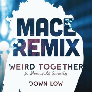 Album Down Low (Mace Remix) from Weird Together