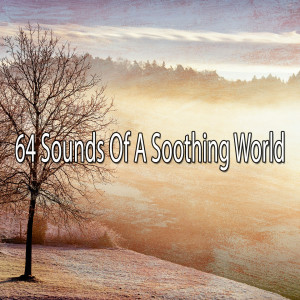 Album 64 Sounds of a Soothing World from Meditation Zen Master