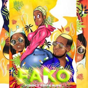 Album Fako from Feffe Bussi