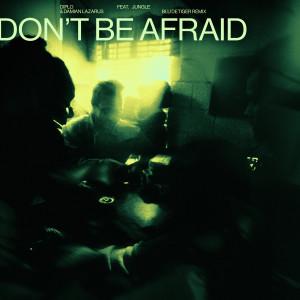 Album Don't Be Afraid (feat. Jungle) (Blu DeTiger Remix) from Diplo