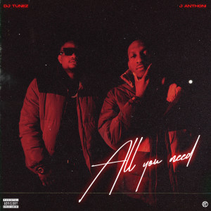 Album All You Need (Explicit) from DJ Tunez