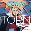 Ava Max Album Torn (Hook N Sling Remix) Mp3 Download