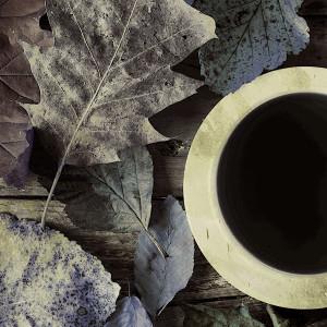 Album Delight Beautiful Tracks from Ornette Coleman