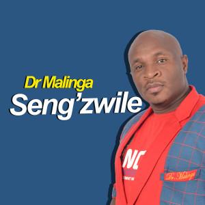 Listen to Sengizwile song with lyrics from Dr Malinga