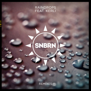 Listen to Raindrops song with lyrics from SNBRN