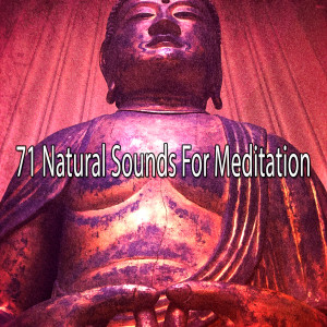 Album 71 Natural Sounds for Meditation from Asian Zen Spa Music Meditation