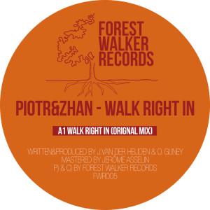 Album Walk Right In from Piotr